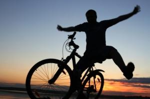 anima dementia active lifestyle