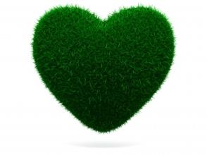 davanti counselling green grass heart